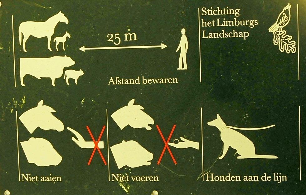 Incident Konikpaarden Ingendael